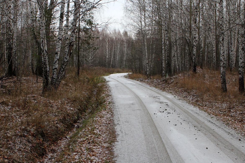 В выходные в Екатеринбурге возможен снег