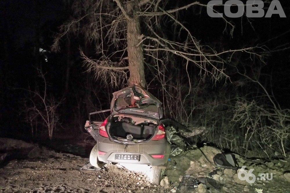 Ночью на Карьерной водитель иномарки врезался в дерево и погиб