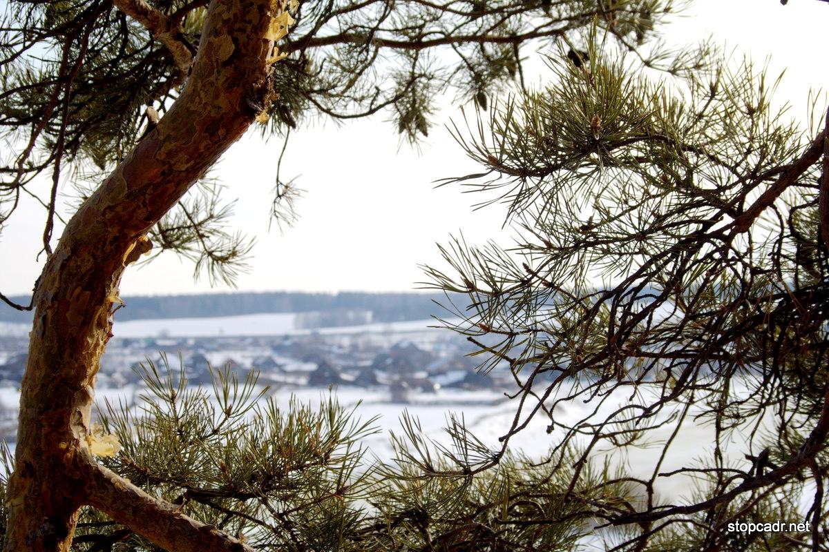 Плюсовая температура и дождь: на неделе в Екатеринбург вернется весна