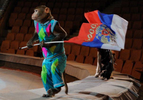Артисты Екатеринбургского цирка застряли на югорской трассе в мороз