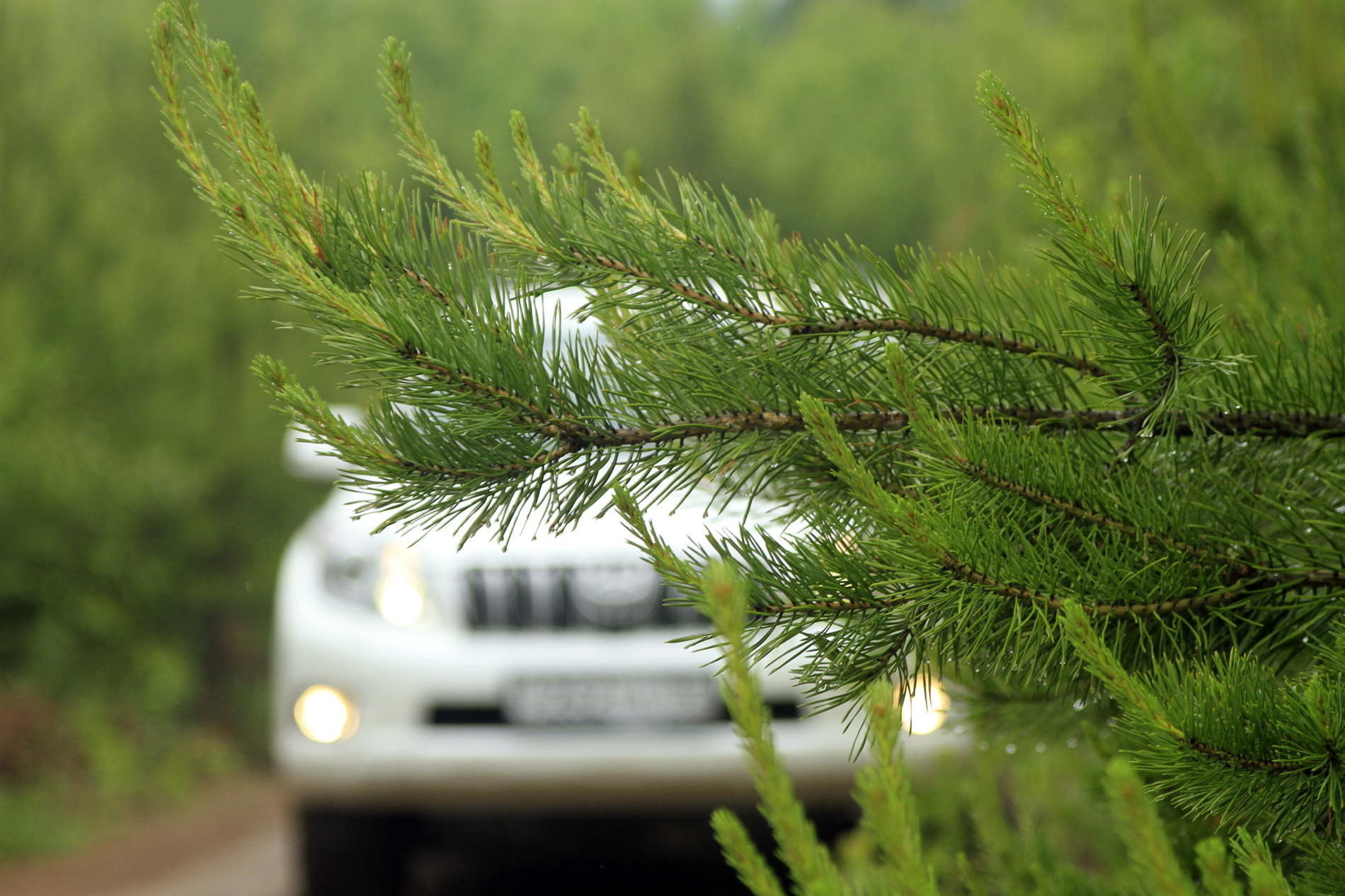 Toyota X-country 2012: испытание грязью и разгул стихии