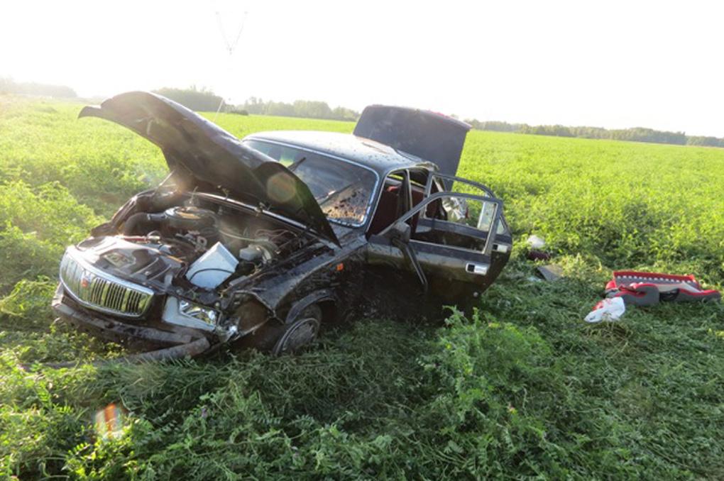 В аварии под Каменском-Уральским пострадала годовалая девочка