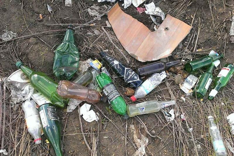 Дети очистили берег Верх-Исетского пруда от бутылок и презервативов