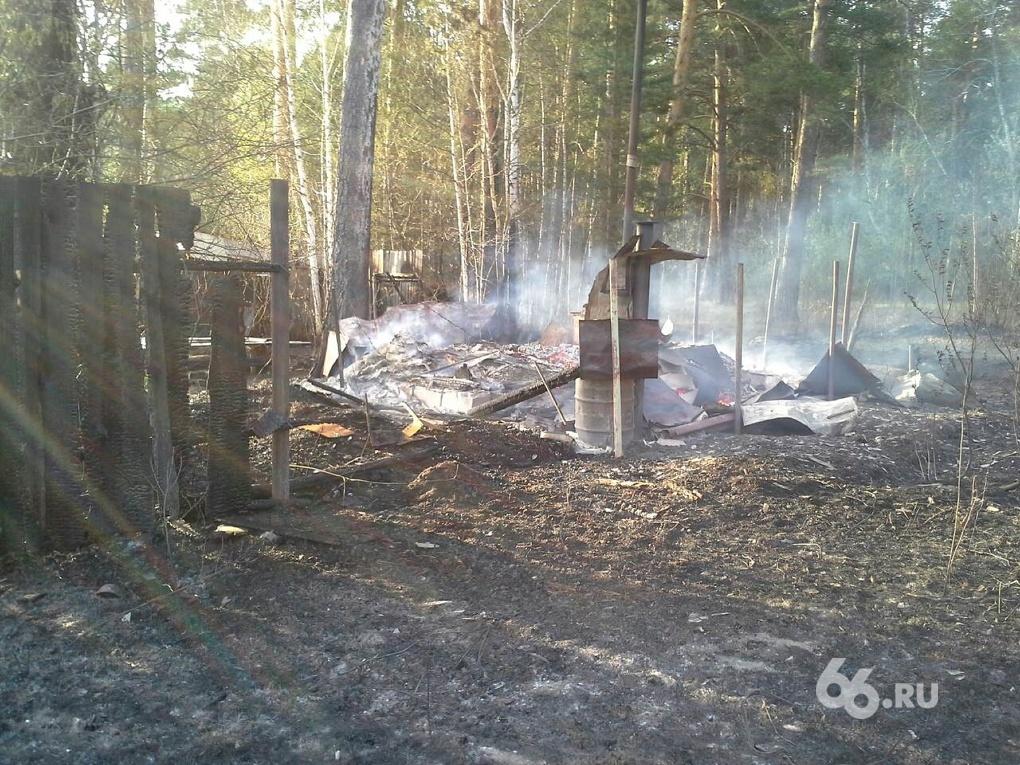 Лесной пожар на Изоплите чуть не спалил коллективный сад