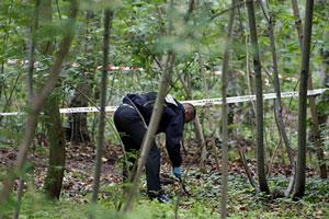 В лесу под Каменском-Уральским нашли очередной труп