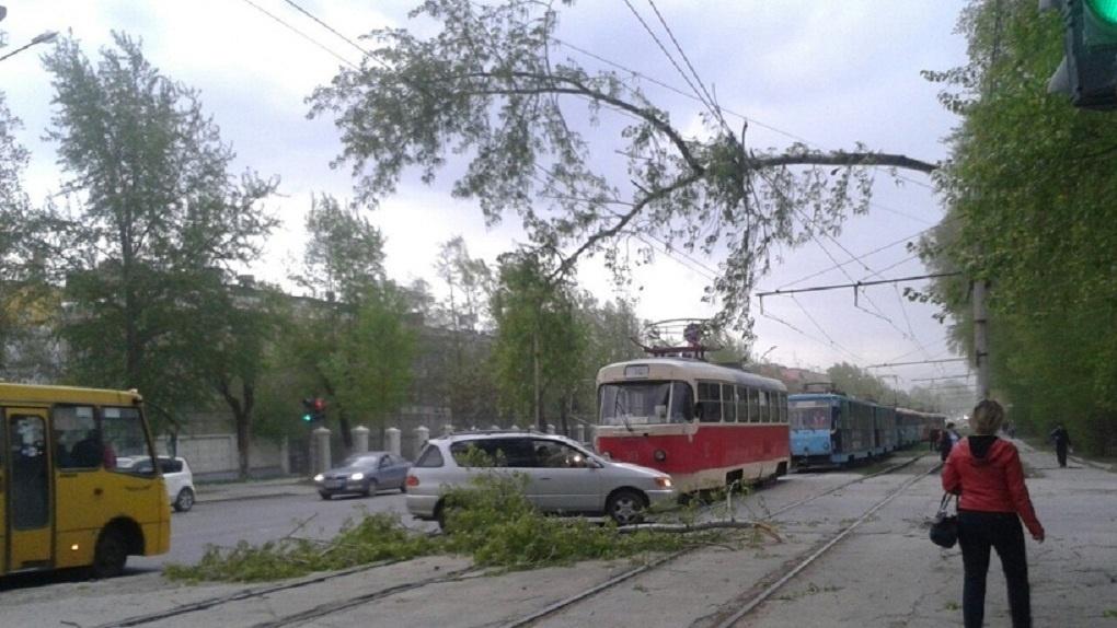 Ввыходные наСреднем Урале будет ветрено: предупреждение МЧС