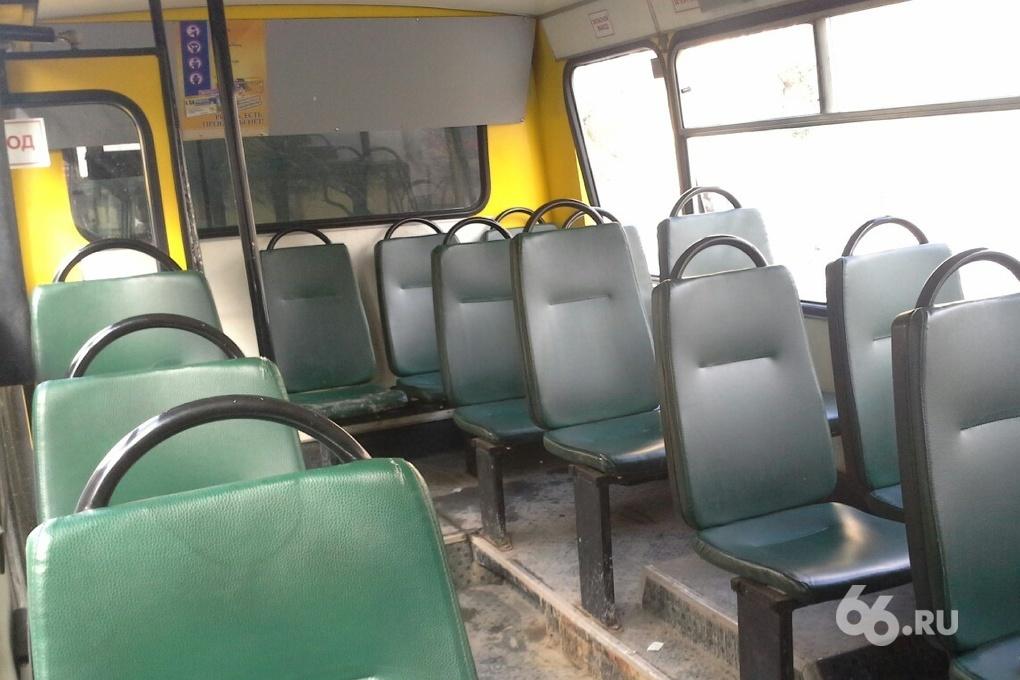Трамваи и автобусы развезут горожан по домам после «Ночи музеев»