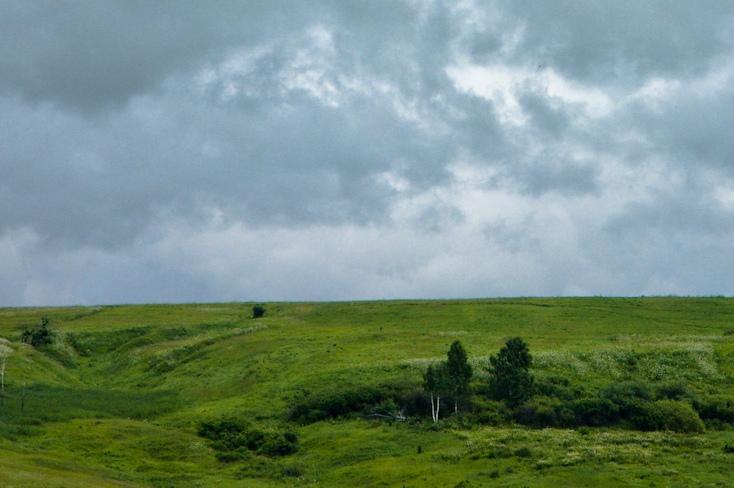 Прогноз погоды на выходные: пасмурно, ветрено, дождливо
