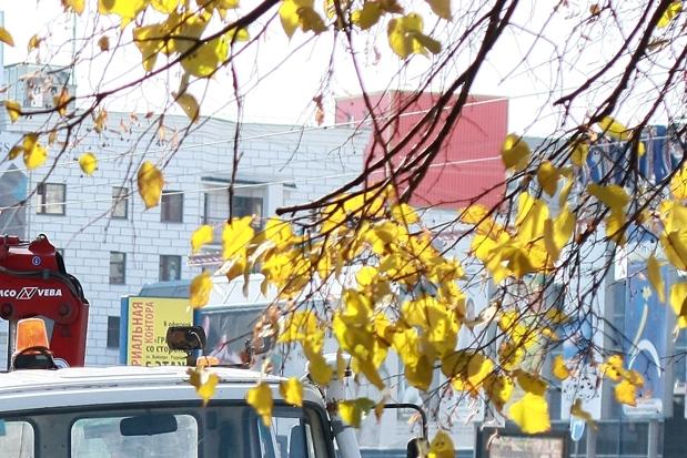 Неустойчивая погода сохранится в Екатеринбурге на всю неделю