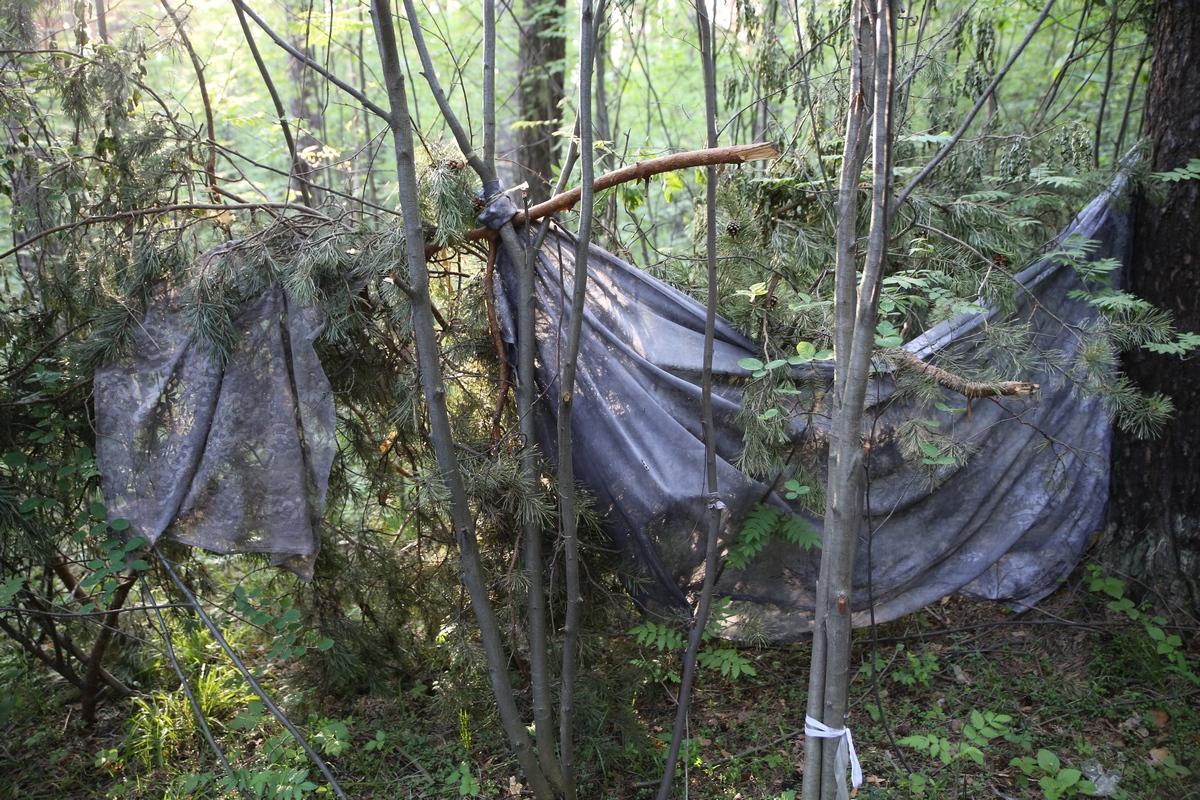 Ушли за зэком. Две екатеринбурженки бросили детей ради лесной жизни с уголовником