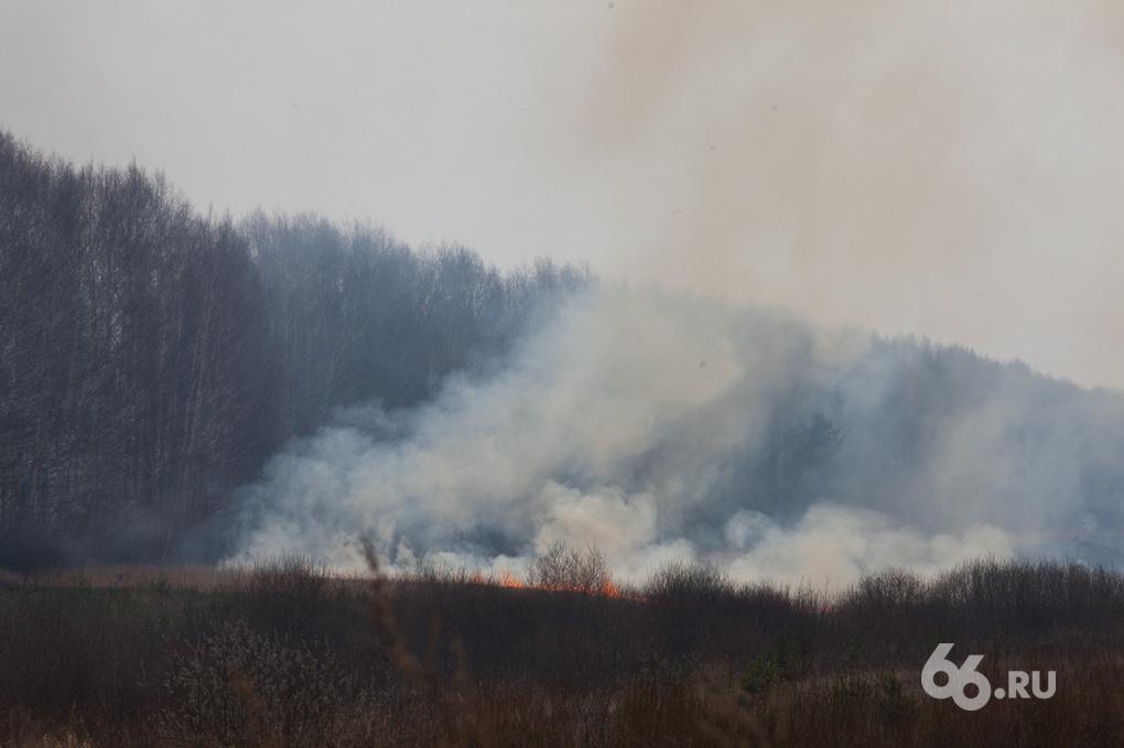 Уральская авиабаза: через месяц нам нечем будет тушить лесные пожары