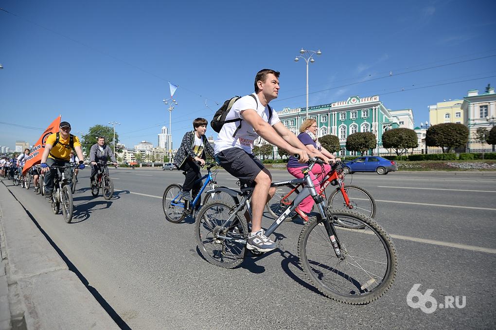 Финны приехали в Екатеринбург — учить Липовича правильно строить велодорожки