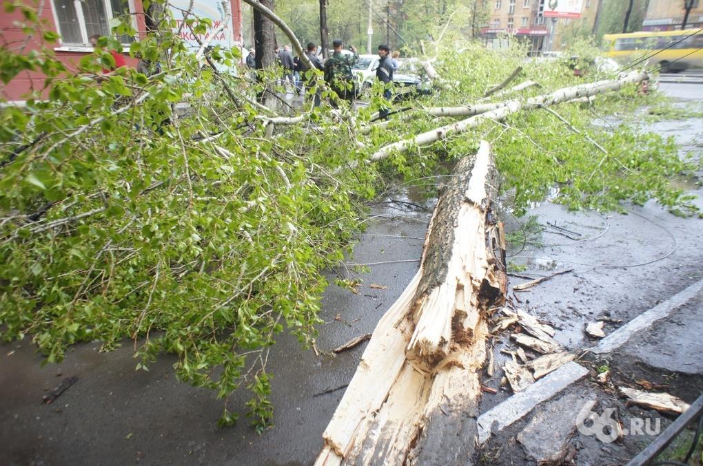 Синоптики обещают в Свердловской области грозы, град и шквалистый ветер