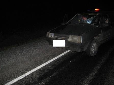Водитель с 39-летним стажем насмерть сбил пешехода под Талицей