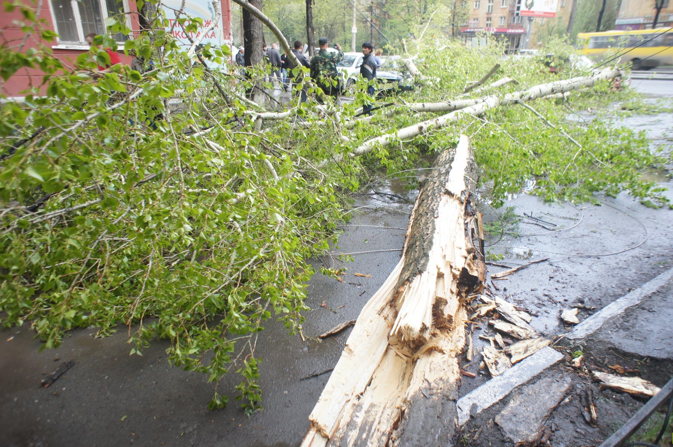 Готовимся. Синоптики сдвинули ураган и ливень в Екатеринбурге на вечер