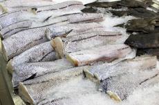 В магазинах Среднего Урала изъяли более 5 тонн некачественной рыбы