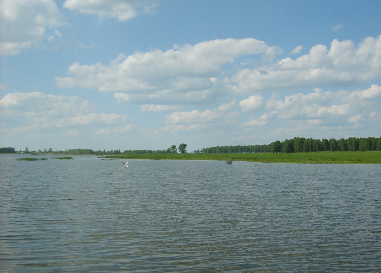 В Екатеринбурге создадут резерв чистой воды