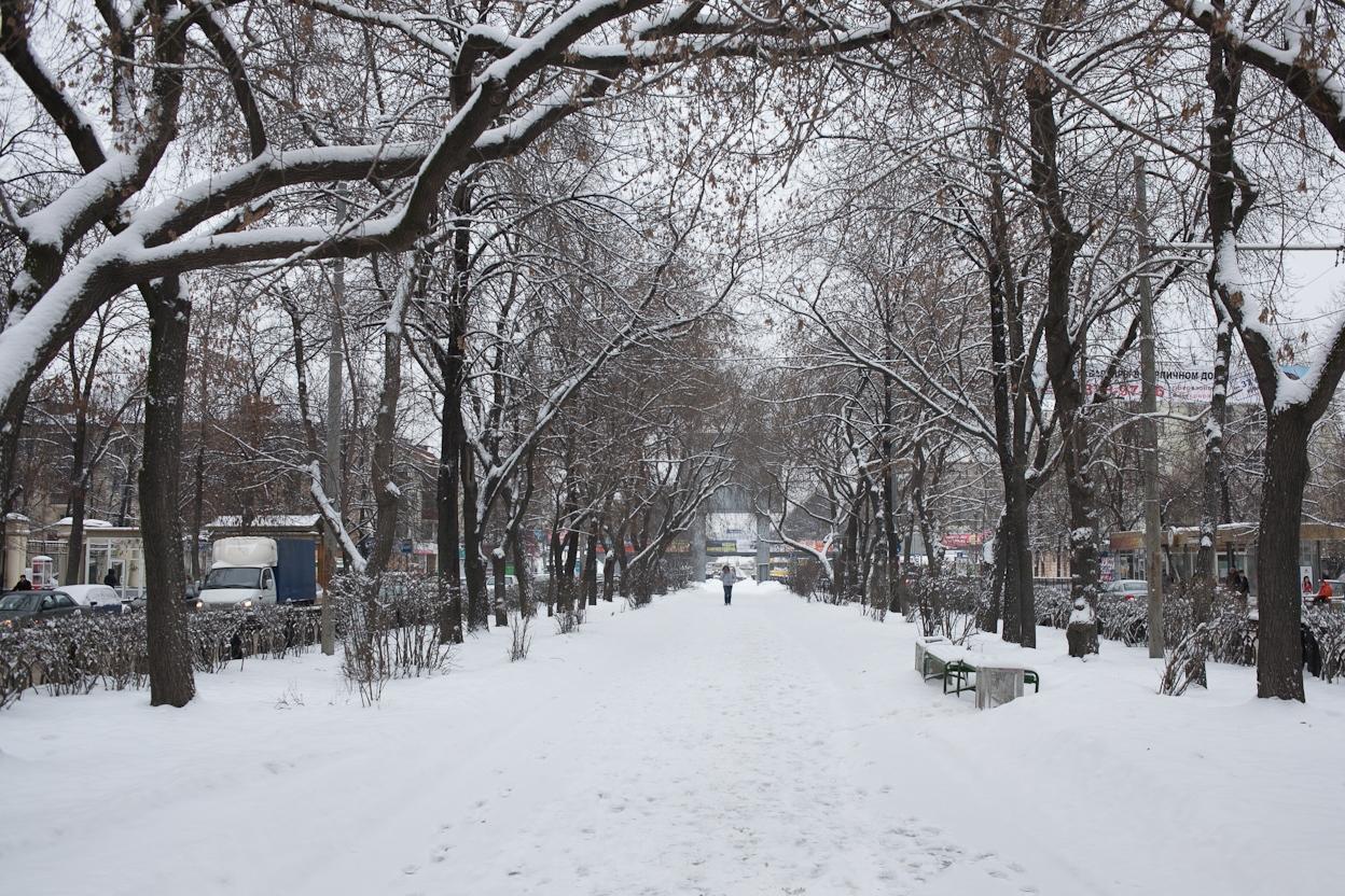 Первая неделя февраля в Екатеринбурге будет снежной и теплой