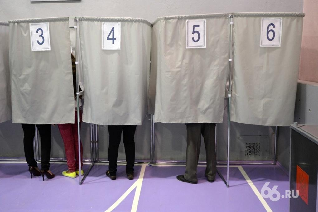 ЛДПР хочет запретить некоторым срочникам выбирать губернаторов