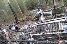 Эксперты МАК: Ан-2 столкнулся с деревом, отказа техники не выявлено