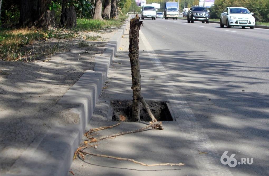 Липович пожурил дорожников и закрыл ремонтный сезон — 2012