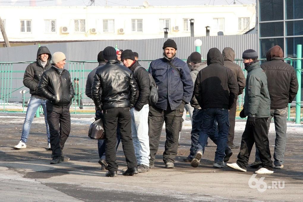 Свердловские приставы взыскали с гастарбайтеров 55 млн рублей