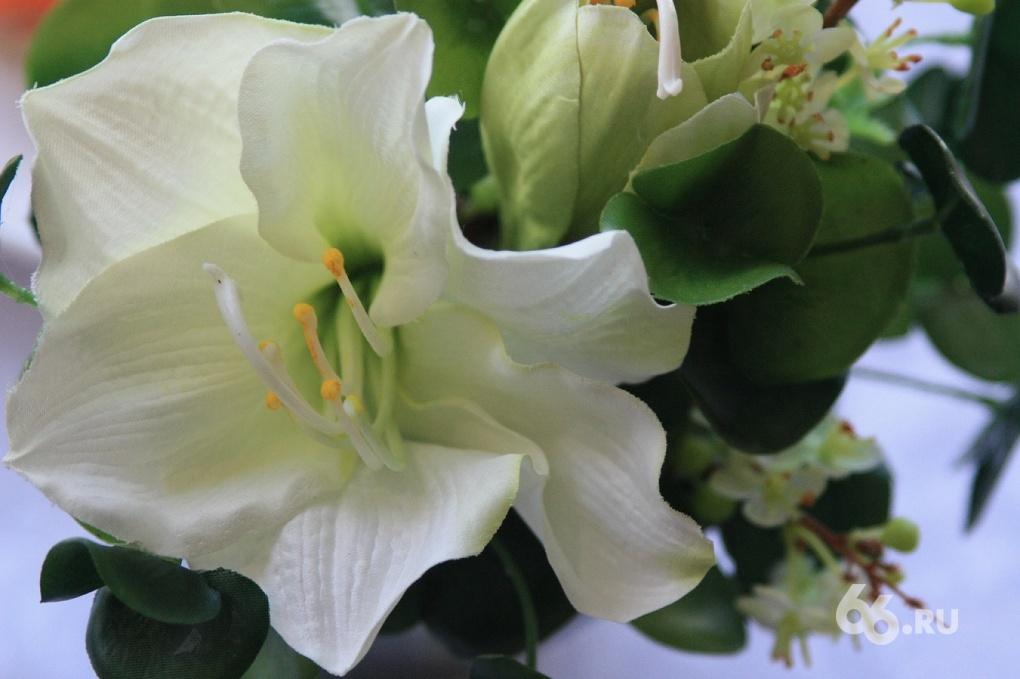 Неравнодушным екатеринбуржцам раздадут белые цветы