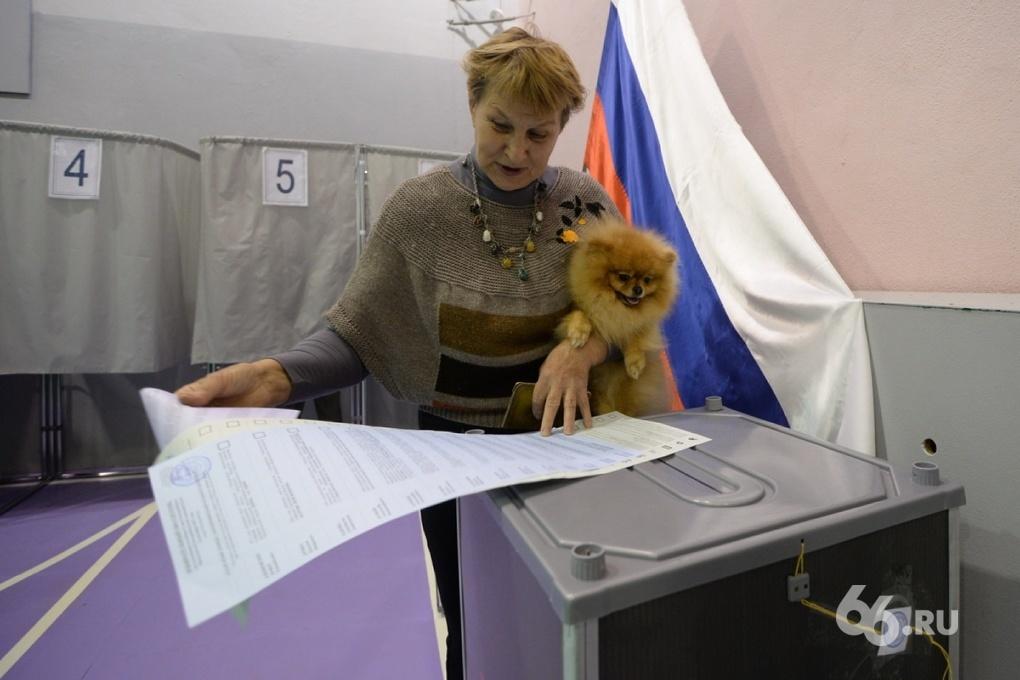 Куйвашеву понравится: депутаты отказались снижать избирательный фильтр