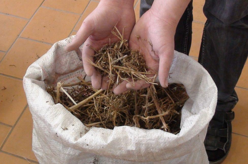 В Свердловской области задержали мужчину с 5 кг марихуаны