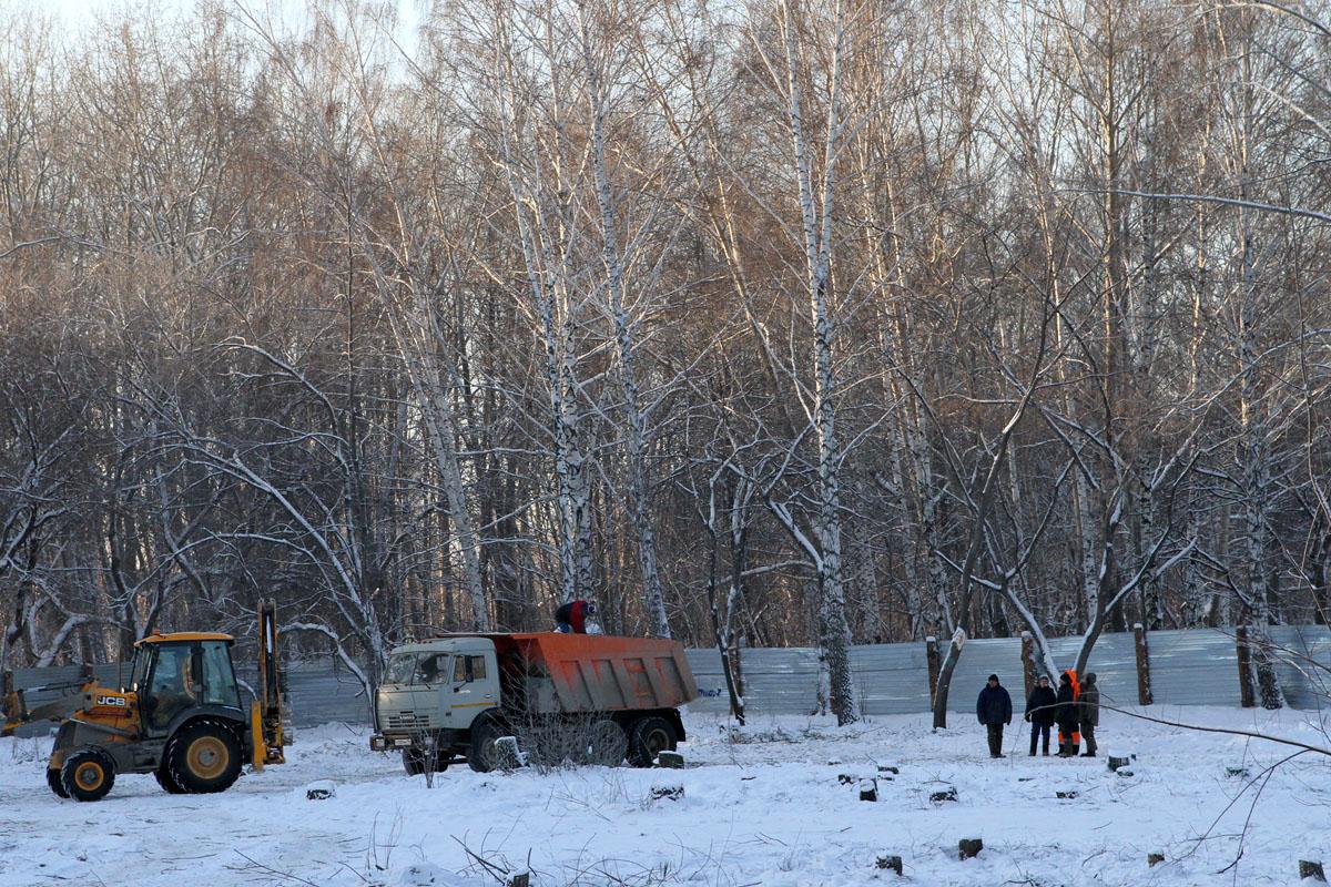 В Собачьем парке началось строительство станции юннатов