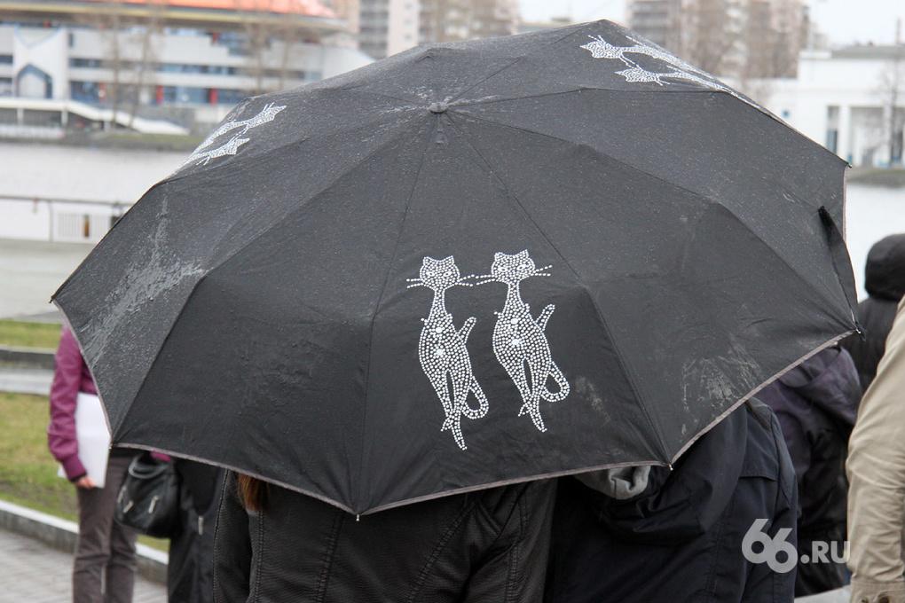 К концу недели дожди в Екатеринбурге усилятся