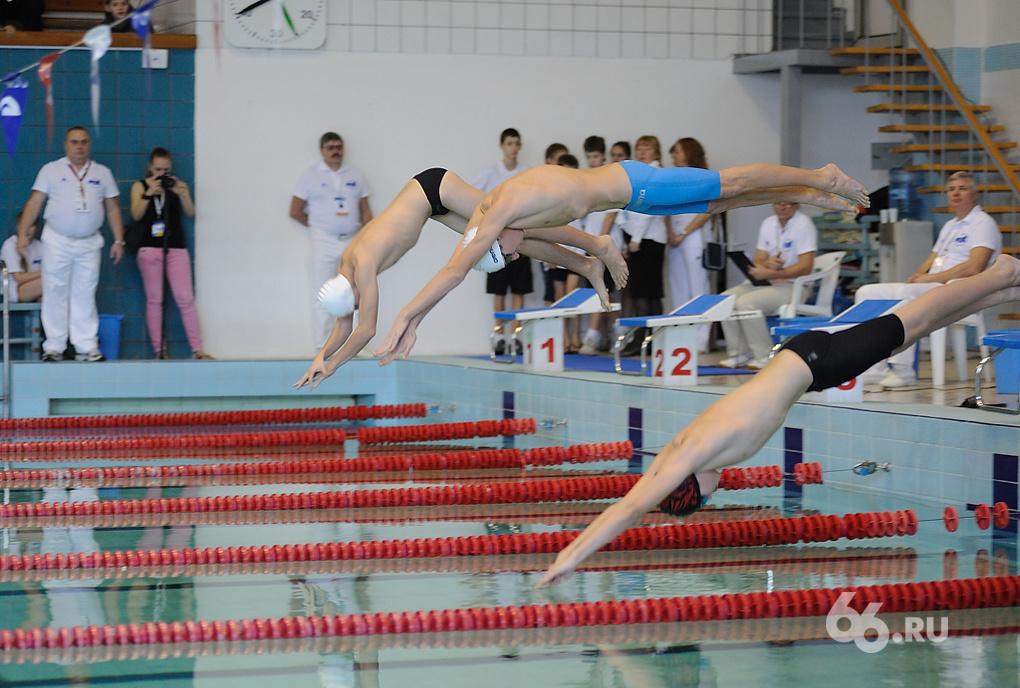 Оптимизация: бюджеты спортивных федераций России сократили на 10%