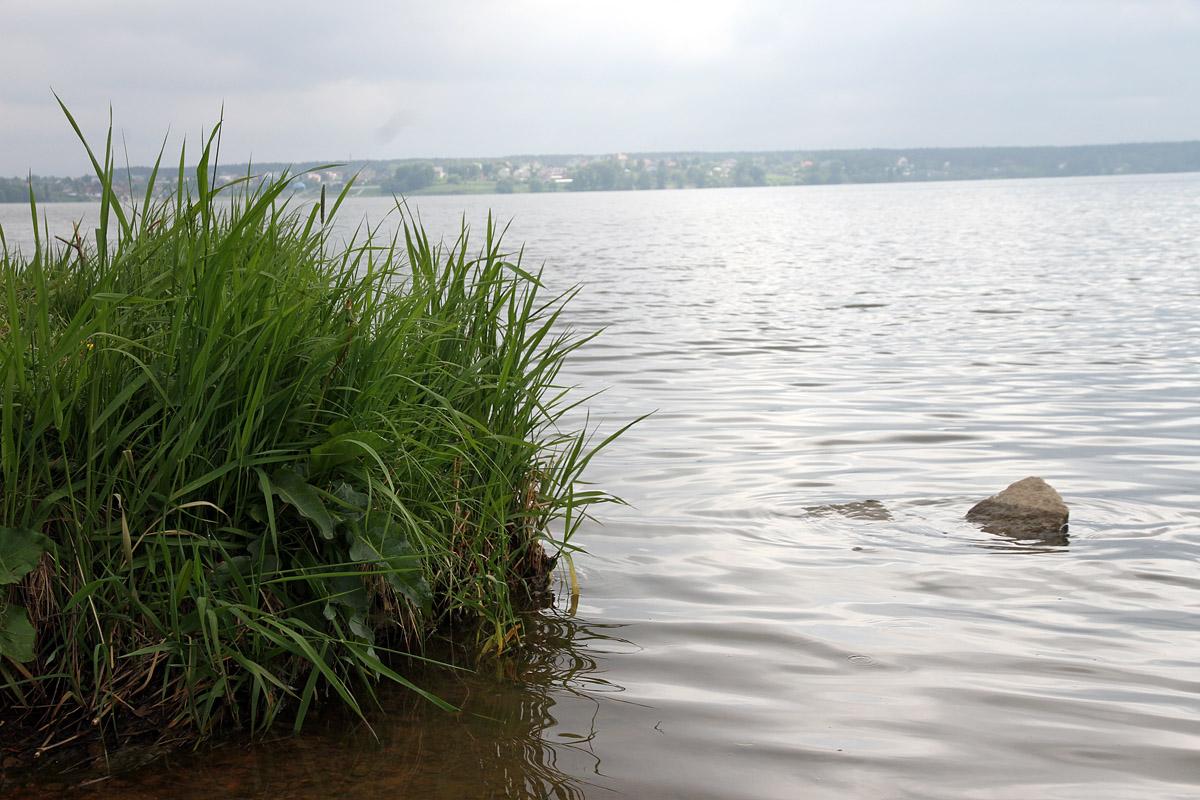 Девять человек отравились после купания в водохранилище под Дегтярском