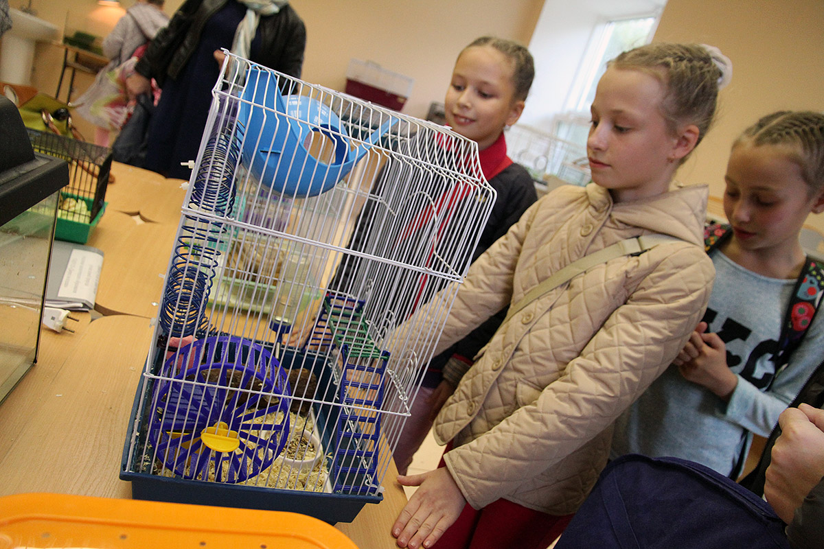 Птички, рыбки, кролики: в «собачьем парке» открыли станцию юннатов