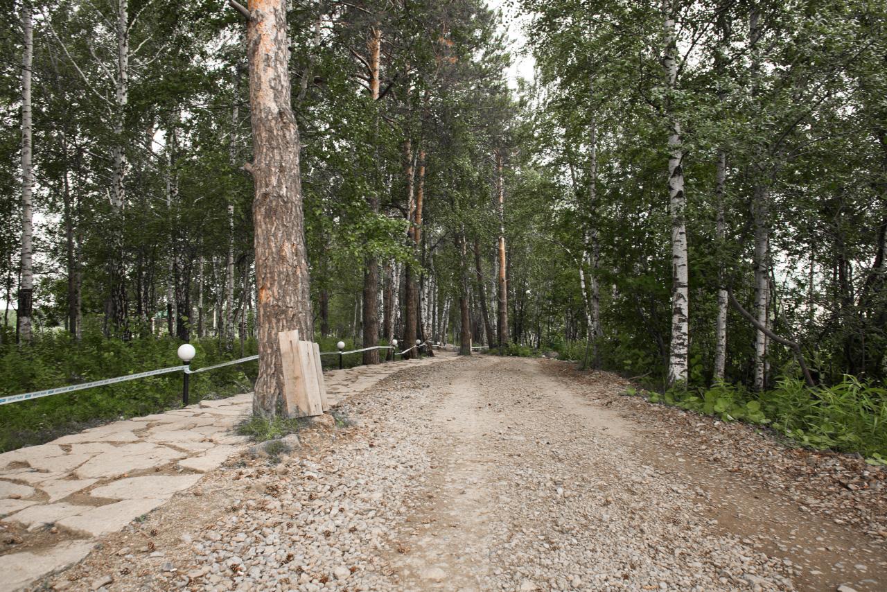 Студенты УрФУ к 9 Мая приберут парк Павлика Морозова и высадят там новые деревья