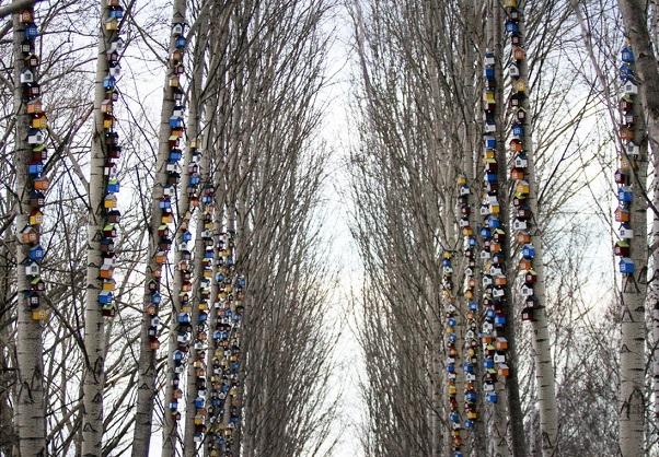 Антикризисную «Весну» перекинули с площади Труда в парк за Дворцом молодежи