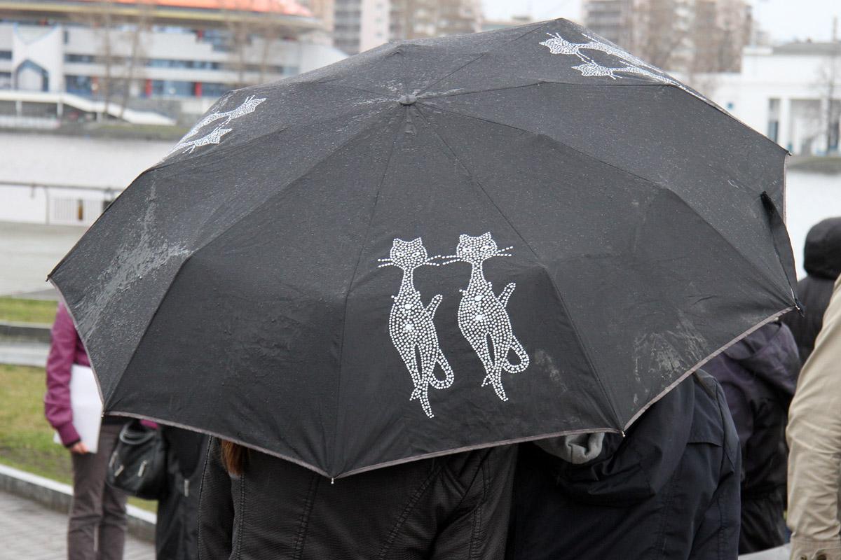 Дожди в Екатеринбурге зарядили на всю неделю