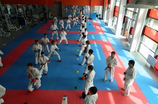 Екатеринбуржцы завоевали 6 медалей на турнире по карате