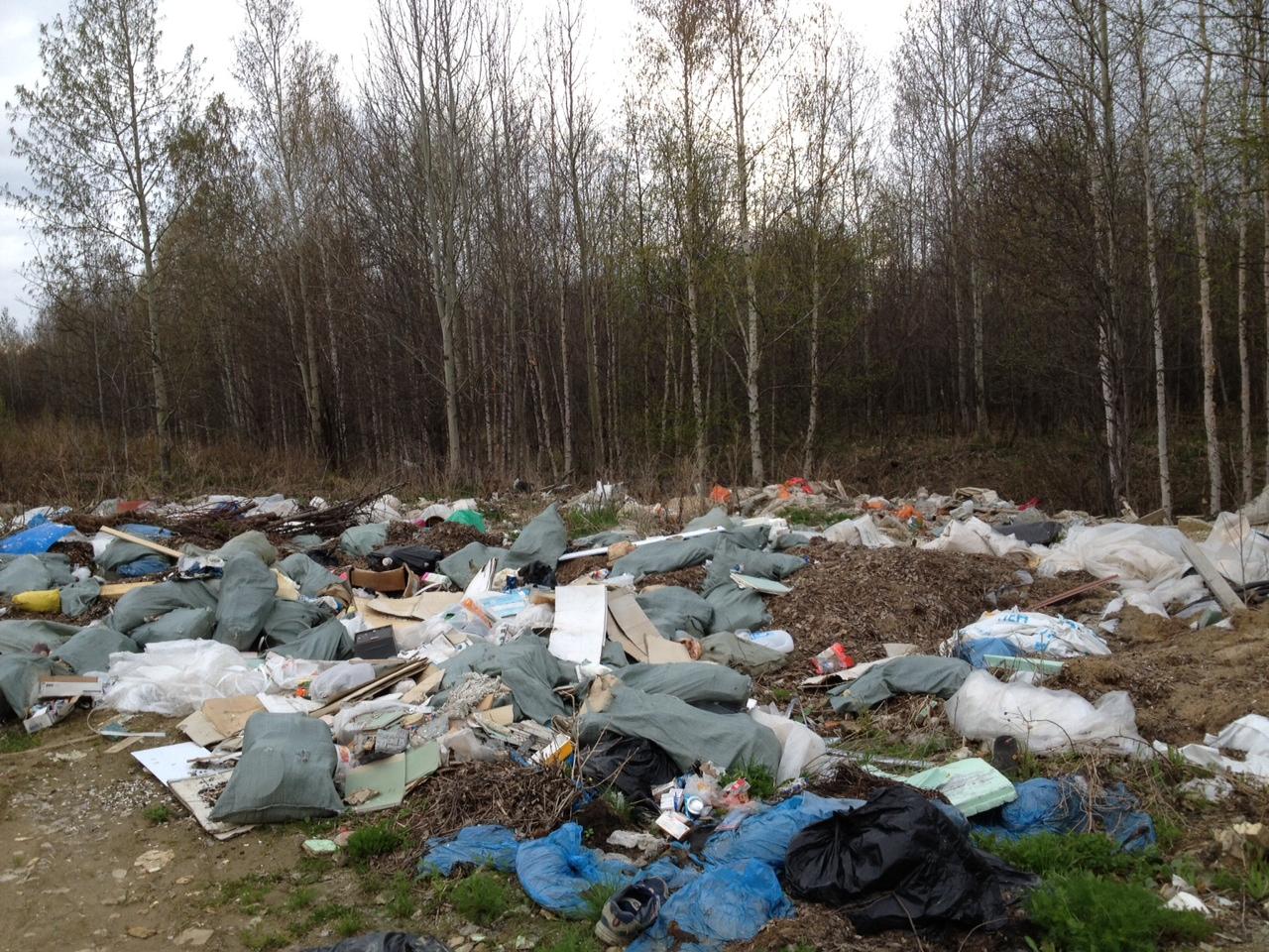 После публикации 66.ru чиновники ликвидировали свалку возле «Карасьеозерского»