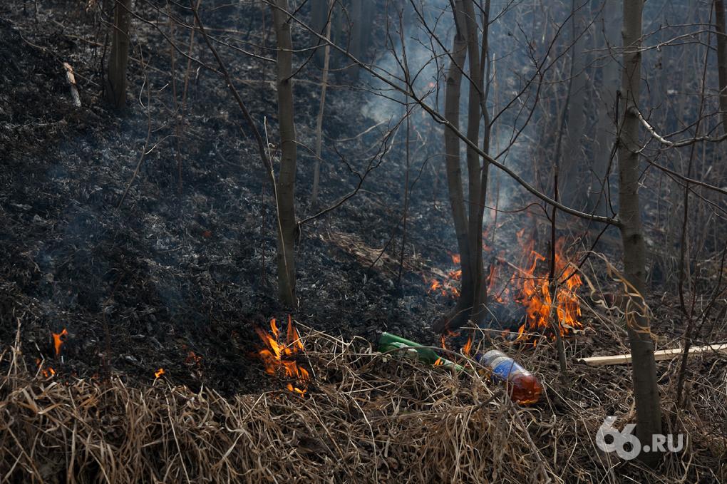 На Урале ждут повторения лесных пожаров 2010 года