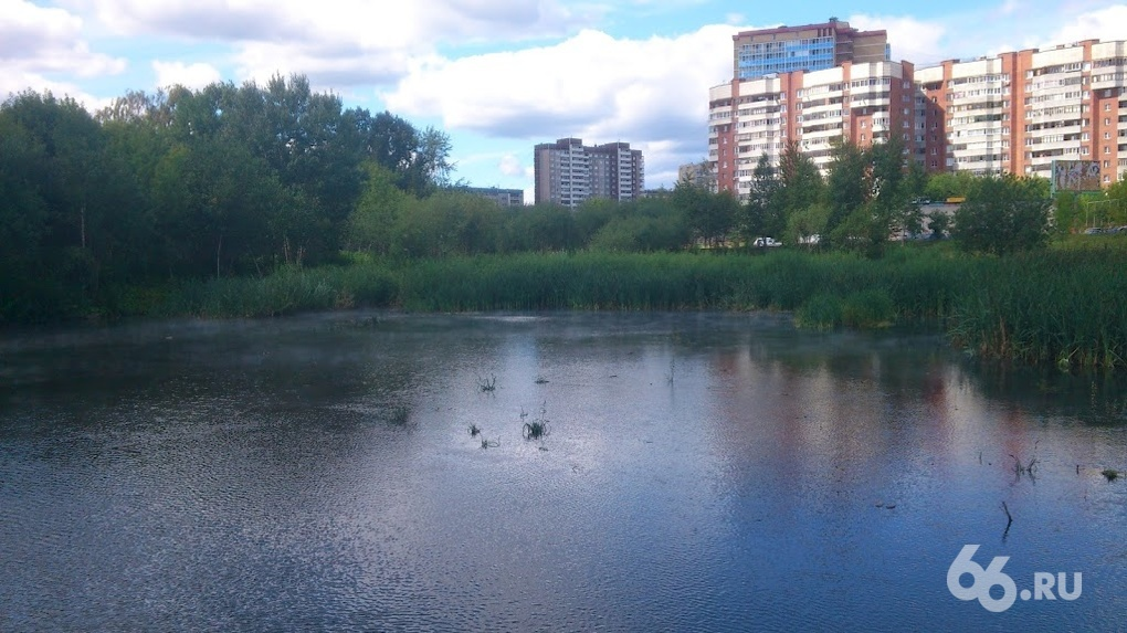 Городской речке дали горячую воду