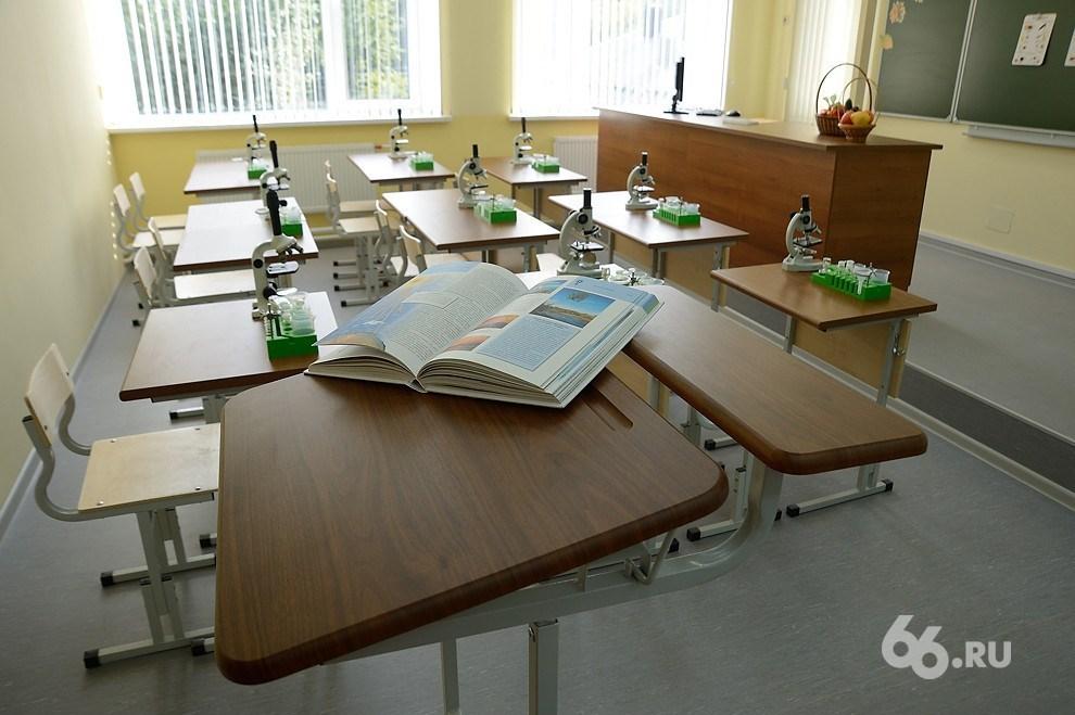 За работой учителя-грубияна из лицея №130 проследят психологи