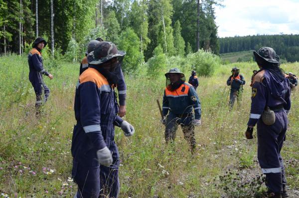 Более 300 человек продолжают поиски пропавшего Ан-2