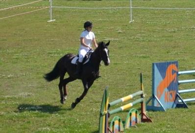 В субботу екатеринбуржцев ждет конный фестиваль