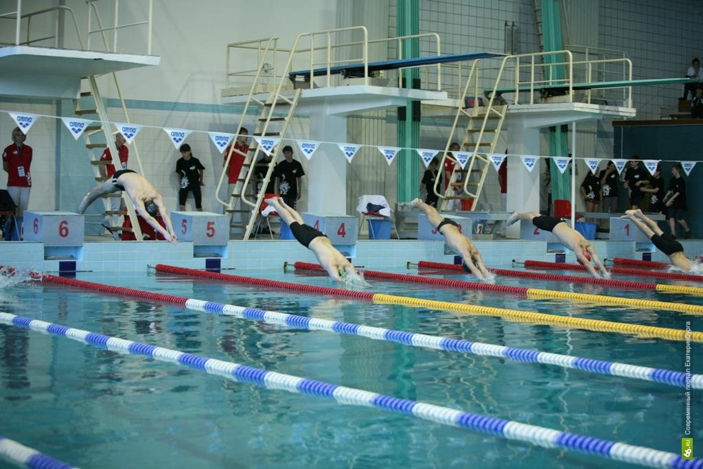 Екатеринбуржцам предложили плавать по ЕКАРТе