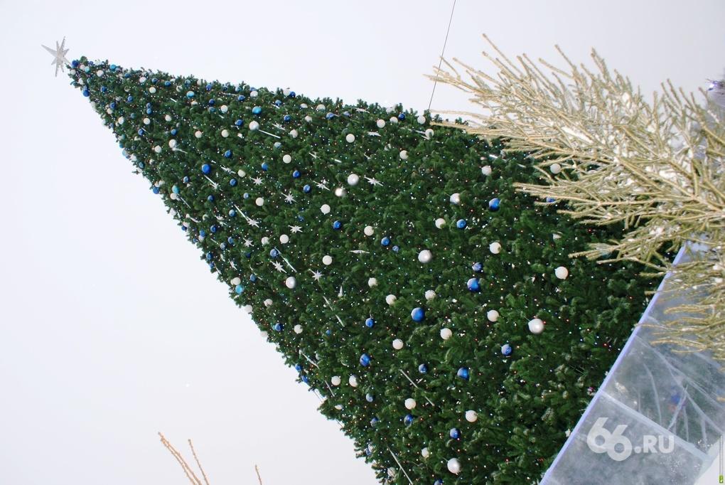 С елки на елку: куда выгулять детей в новогодние каникулы
