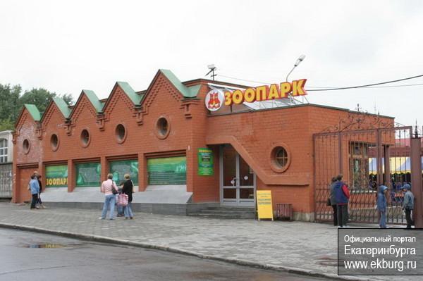 Символом года в екатеринбургском зоопарке стал заяц Степашка