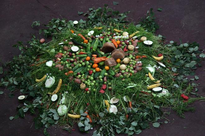 Слонихе Даше подарили овощной торт