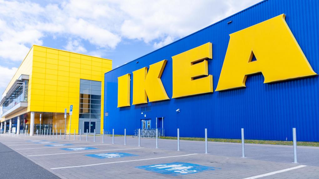 IKEA уличили в производстве мебели из незаконно вырубленного сибирского леса