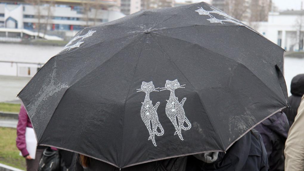 МЧС: вСвердловской области ожидаются сильный дождь, ветер иград